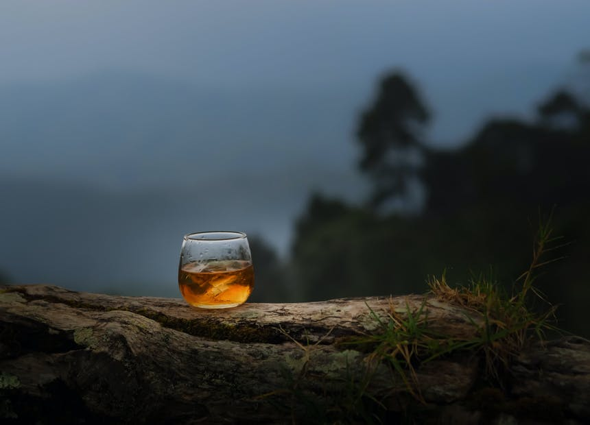 Glass of whiskey on a tree